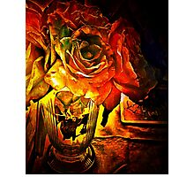 Roses In The Light Photographic Print