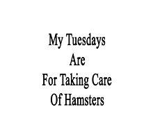 My Tuesdays Are For Taking Care Of Hamsters  by supernova23