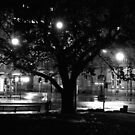 Franklin Square, Hobart by John  Cuthbertson | www.johncuthbertson.com