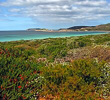 Rossiter Bay, Cape Le Grande National Park, Esperance,  Western Australia (Y) by Adrian Paul