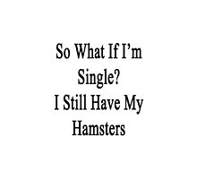So What If I'm Single? I Still Have My Hamsters  by supernova23