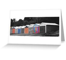 Selective colour lesson  Greeting Card