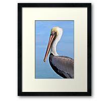Ready For My Close Up Framed Print