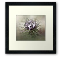Queen of the Mist Framed Print