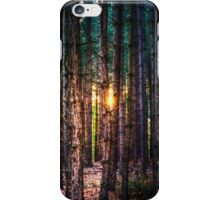 A Light in the Trees iPhone Case/Skin