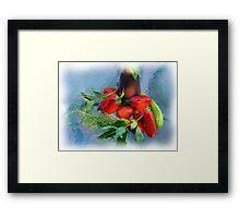 Garden Bounty Framed Print