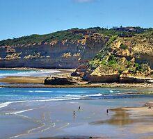 Bird Rock, Jan Juc surf beach '09 by Andy Berry