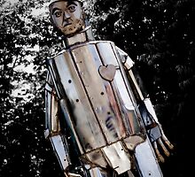 The Tinman by Erin  Sadler