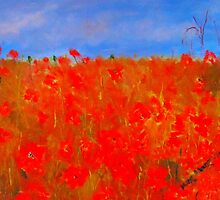 Poppies in the field (oil on canvas) by Margaret Morgan (Watkins)