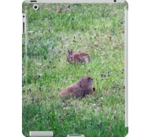 Backyard Meeting iPad Case/Skin
