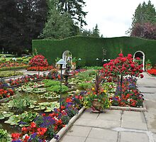 The Italian Gardens by Cathy Jones