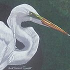 Profile in White by Anita Meistrell Putman