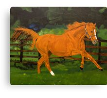 Chesnut fire Canvas Print