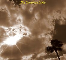 Florida, The Sunshine State ~ Part One by artisandelimage