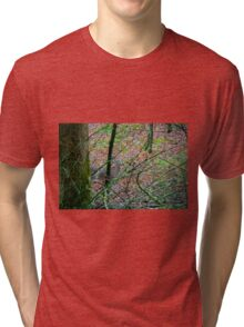 Sneak a Peak Tri-blend T-Shirt