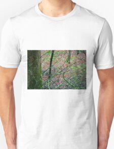 Sneak a Peak T-Shirt