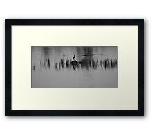 silhouette's of the swamp Framed Print