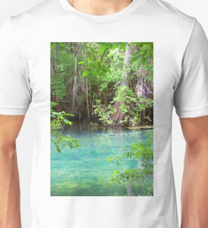 Through the Cypress Trees Unisex T-Shirt