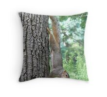 Super Squirrel Throw Pillow