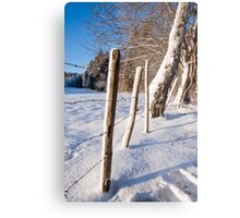 Rural winter scene Metal Print