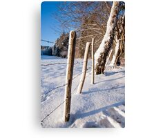 Rural winter scene Canvas Print