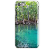 Spring into Summer  iPhone Case/Skin