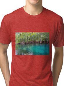 Spring into Summer  Tri-blend T-Shirt