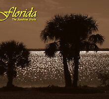 Florida, The Sunshine State ~ Part Two by artisandelimage