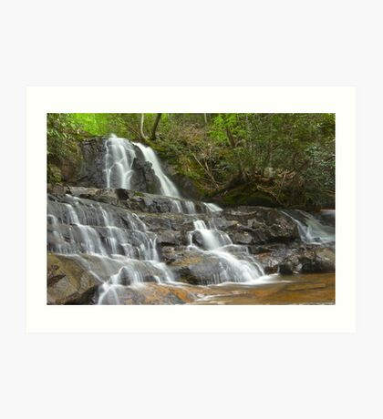 Laurel Falls, Great Smoky Mountains Art Print