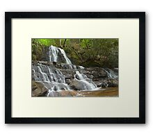 Laurel Falls, Great Smoky Mountains Framed Print