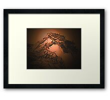 To The Happy Hunting Ground Framed Print