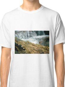 Fungus Falls Classic T-Shirt
