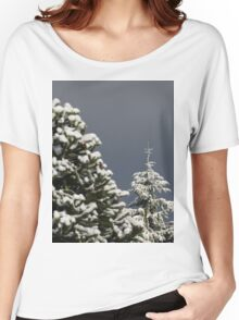 Seasons Greetings Women's Relaxed Fit T-Shirt