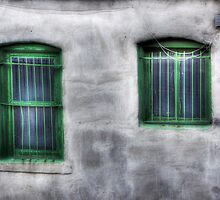 Green Windows by Delany Dean