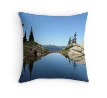 Tarn Throw Pillow