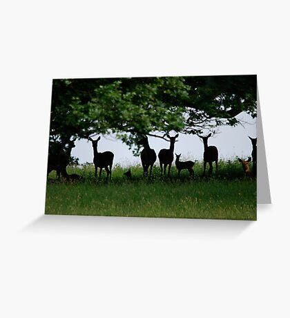 Silhouettes in the Wood Greeting Card