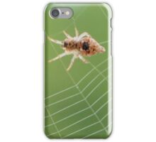 Trashline Orb Weaver iPhone Case/Skin