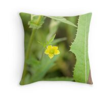 Yellow avens (Geum aleppicum ) Throw Pillow