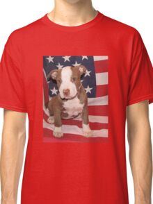 I'M ALL AMERICAN Classic T-Shirt