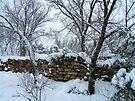 Winter Wall by Vicki Pelham