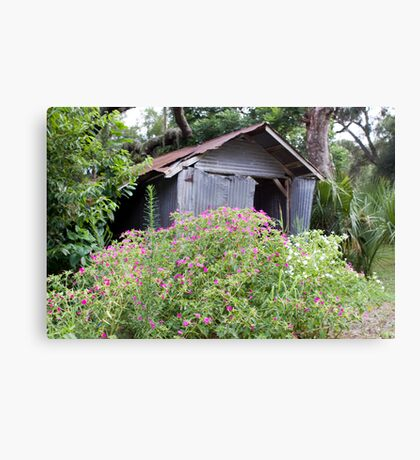 shed n flowers Canvas Print