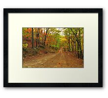 Rainbow Lane Framed Print