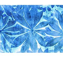 Blue Stars Photographic Print