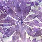 Purple Stars by Sarah Donoghue