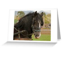 A Proud and Lofty Carriage Greeting Card