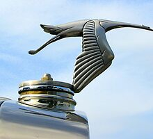 Hispano Suiza by ienemien