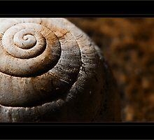 L'armure de l'escargot by R-evolution GFX
