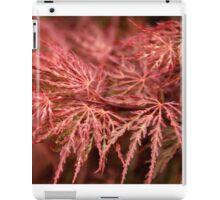 Firey Oriental Maple Tree iPad Case/Skin