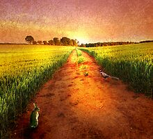 The Old Straight Track by JohnAllmark