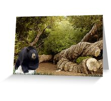 1235A-Timberland Woody Greeting Card